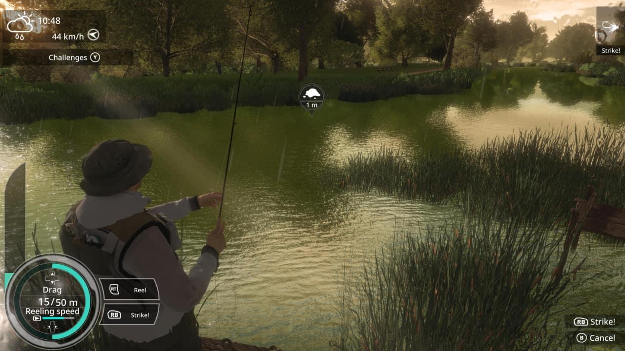 Download Pro Fishing Simulator Free for PC